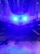 LEDs Z7